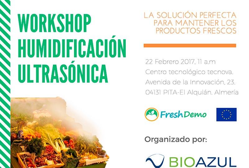 Día 22 de febrero. Workshop humidificación ultrasónica. Almería