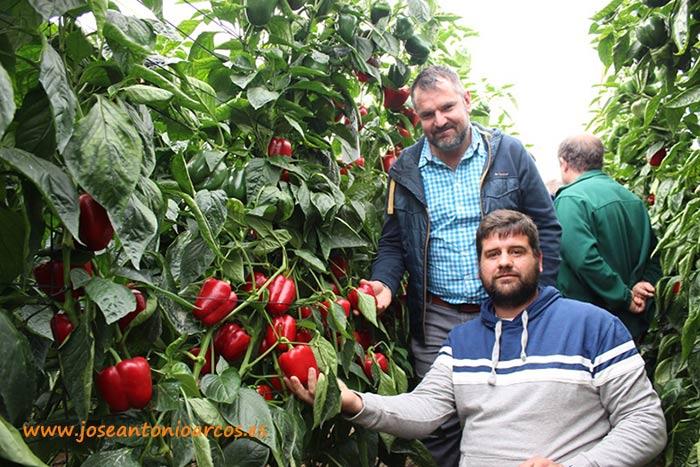 Cristóbal Montilla y Diego Pérez, agricultores de El Ejido, con 'Merkava'.