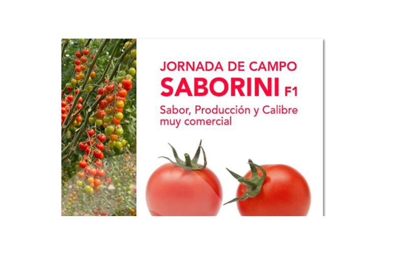 Día 2 de marzo. Jornada de campo Saborini de Clause. Albuñol