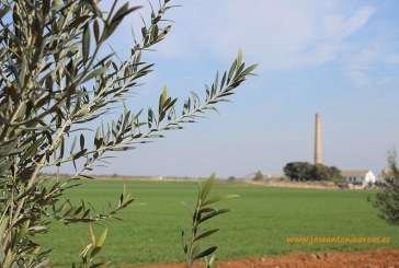 Hoy se publica un informe sobre los falsos pesticidas