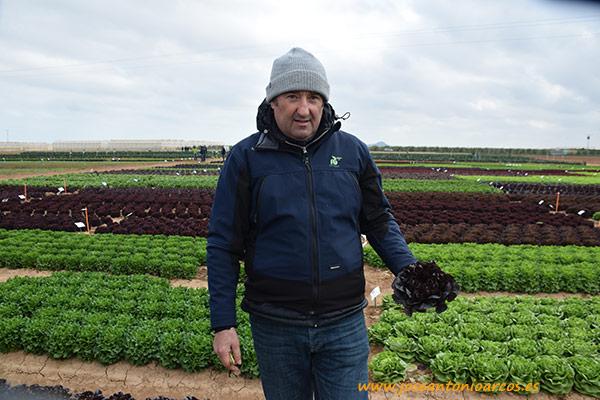coordinador de lechuga de Rijk Zwaan para Europa, Medio Oriente y África