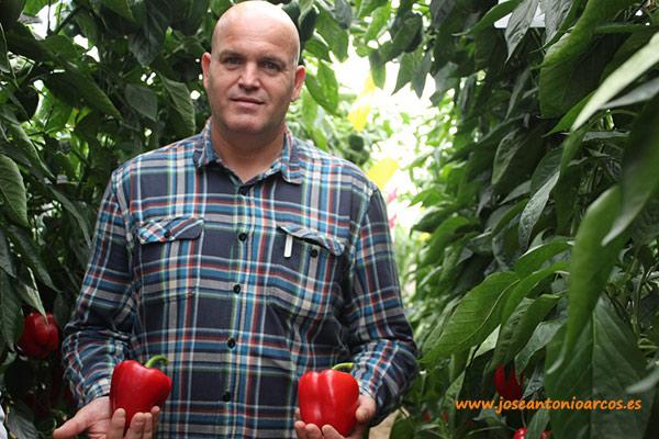 Juan Diego Martínez, técnico comercial de Zeraim.