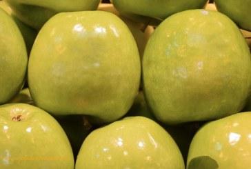 Cataluña pide la retirada del mercado de 3.000 toneladas de manzanas