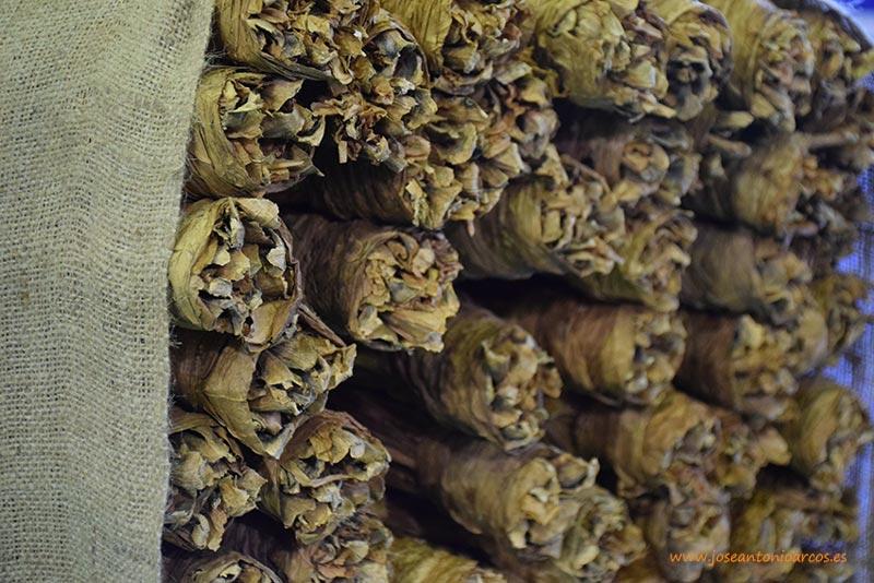 Día 23 de febrero. Jornada 'El sector del tabaco a debate'. Cáceres