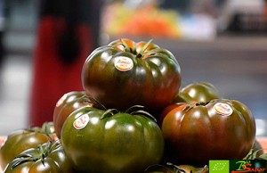 Tomate-Asurcado-Biosabor