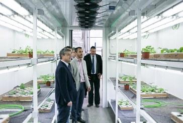 Rijk Zwaan, Cajamar y la UAL investigarán los beneficios del CO2
