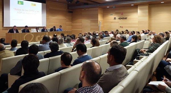 Jornada sobre OPFH's en la Casa de las Mariposas de la ciudad de Almería.