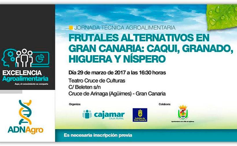 Día 29 de marzo. 'Frutales alternativos en Gran Canaria: caqui, granado, higuera y níspero'