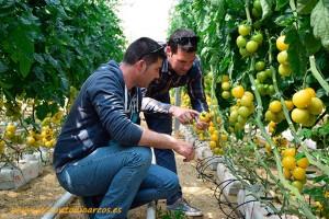 Los hermanos Blanes, agricultores del campo de Níjar, Almería.