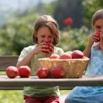 Tendencia EcoFriendly: La nueva alimentación saludable