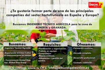Alhóndiga La Unión precisa de Ingeniero Técnico Agrícola para zona de Almería y Granada