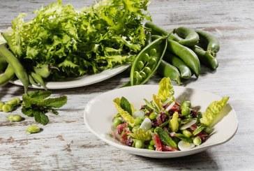 Los mercados de Barcelona dan ejemplo en la promoción del consumo de verduras