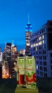 Bio-Sol-en-Nueva-York-2