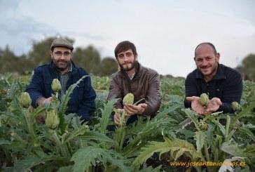 El Huertanico recupera la huerta tradicional de la ciudad de Murcia