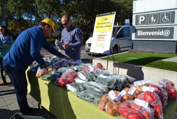 COAG denuncia el desplome en picado del precio del calabacín