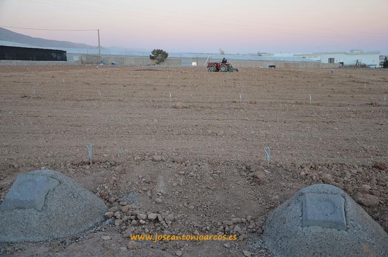 Modernización de invernaderos en El Ejido, Almería. Nuevas explotaciones agrícolas.