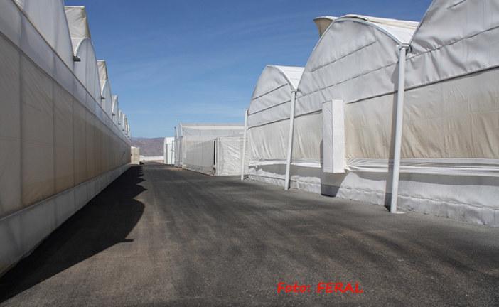 Un corte de agua deja sin riego a 3.190 hectáreas del Bajo Andarax