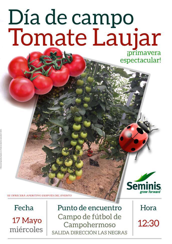 Jornada de tomate Laujar de Seminis