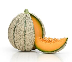 Melon Cantaloup Jacobo de Semillas Fitó
