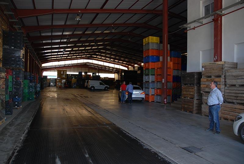 Centro logístico del Grupo Agroponiente en Guadix, Granada.