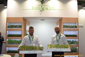 Semillero Ecospain en la feria InfoAgro Exhibition 2017.