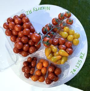 Nuevo tomate cherry de Rijk Zwaan, RZ.