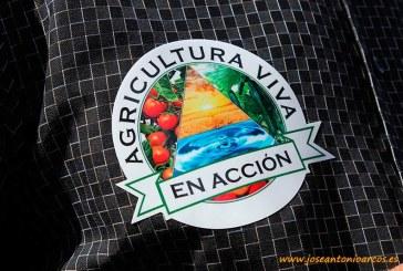 Día 21 de junio. Jornada informativa de Agricultura Viva en Acción en  CASI