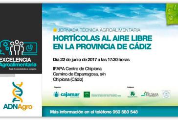 Día 22 de junio. Jornada 'Hortícolas al aire libre en la provincia de Cádiz'