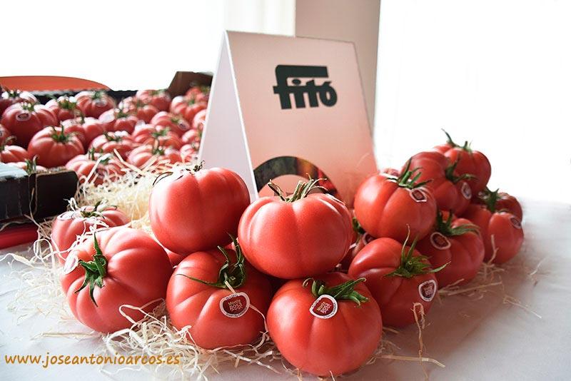 Tomate Monterosa de Semillas Fitó y Grupo Gavá.