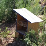 La alicantina Surinver y Greenyard colocan islas y setos en control biológico