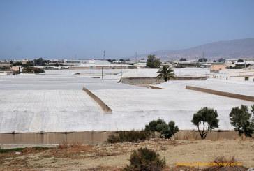Asaja y Coag preocupadas por las 3.000 hectáreas que siguen sin agua