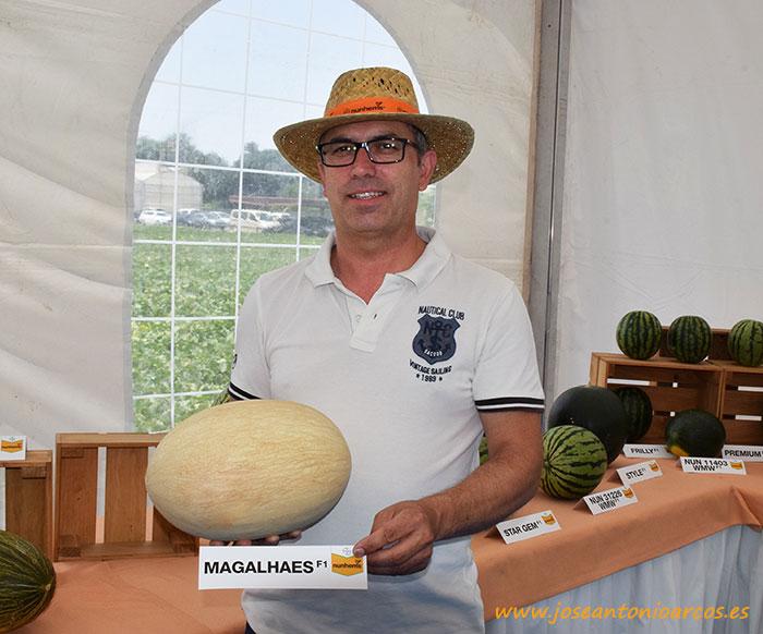 Artur Santos con Magalhaes. Melón blanco o branco de Nunhems. Melones de Portugal.