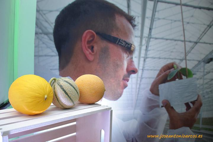 Melon Week Seminis Murcia.