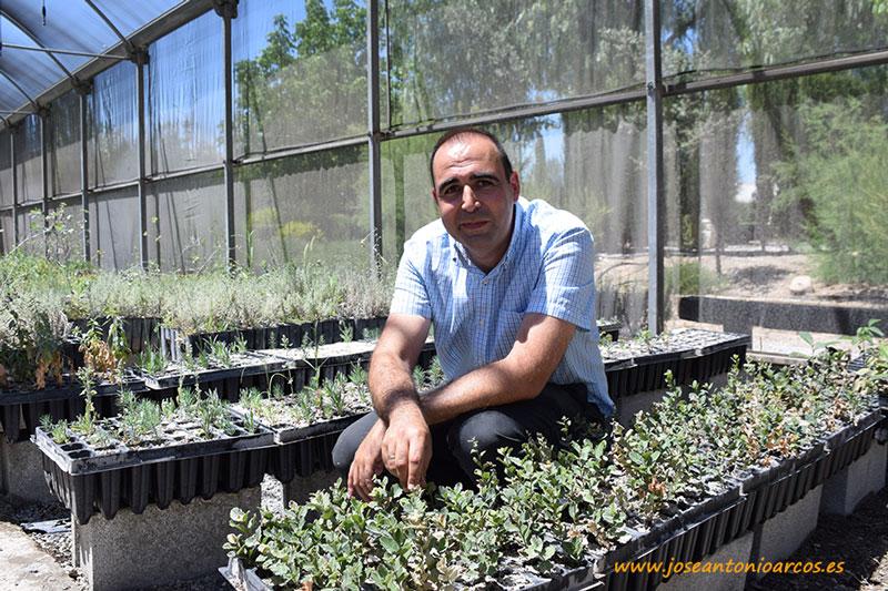 El Bosque mediterráneo pierde su set frente a la desertificación