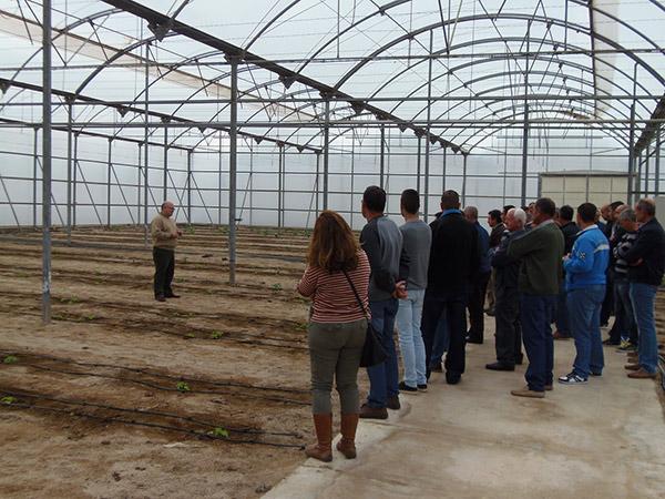 Francisco Camacho atendiendo a una visita de agricultores en la finca experimental de la Universidad de Almería-Anecoop.