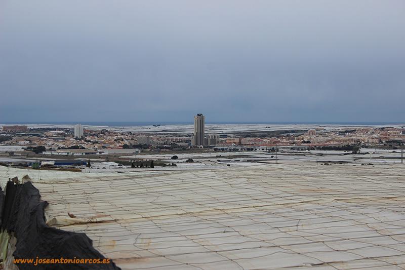 Andalucía cierra su mejor semestre exportador gracias al invernadero
