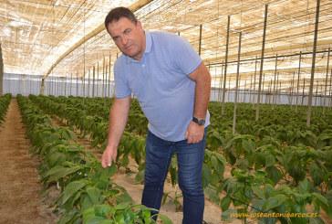 COAG recuerda que el seguro agrario es la garantía de renta de los agricultores