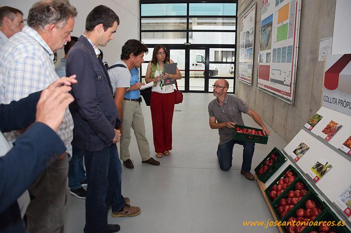 Luis Asin es responsable del área de investigación en fruticultura.