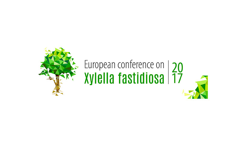 From 13-15 November 2017. European conference on Xylella fastidiosa