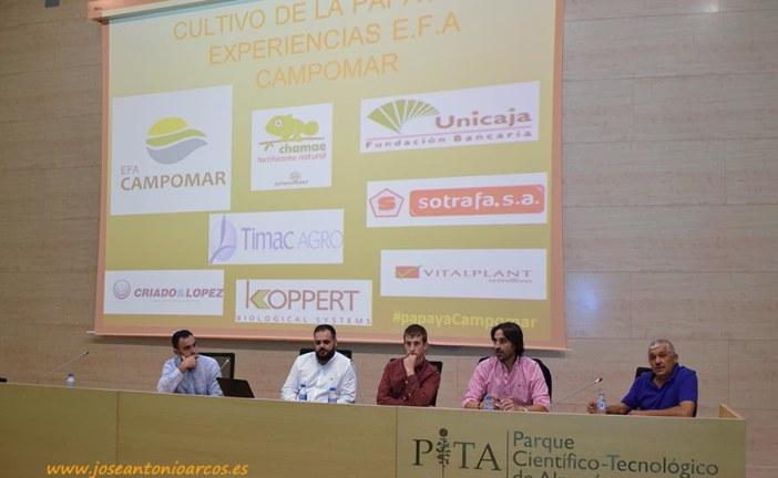 La papaya va en serio en Almería. Perspectivas de futuro