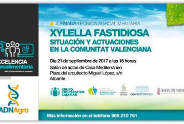 Día 21 de septiembre. Jornada sobre la Xylella fastidiosa. Alicante