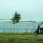 El agricultor holandés tiene una explotación media de 3,5 hectáreas