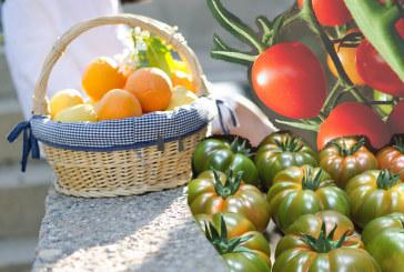 El tomate Karamel abanderará la nueva imagen corporativa de Keops en Madrid