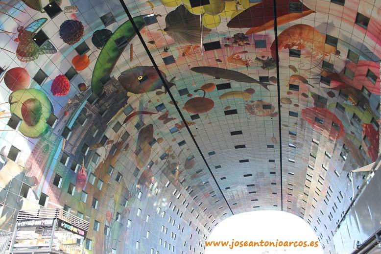 Bóveda de frutas y vegetales del Market Hall de Rotterdam, Países Bajos, Holanda, Netherlands.