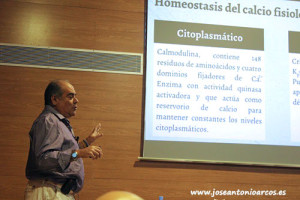 Manuel Jarén, científico del CSIC.