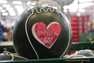 Grupo Fashion repite por 9º año en IFEMA