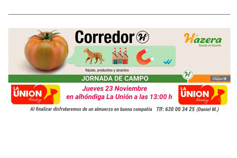 Día 23 de noviembre. Jornada de campo de tomate Corredor de Hazera