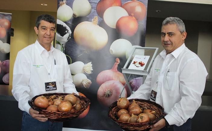 Las cebollas de Ramiro Arnedo