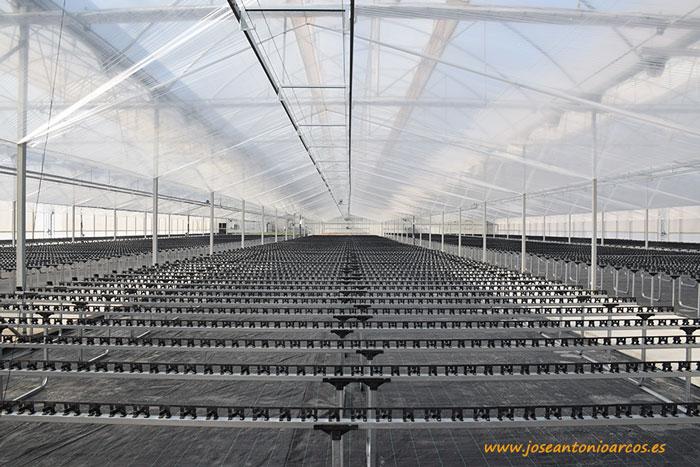 Instalaciones de ecológico de Grupo Cristalplant.