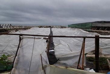 Testimonio de un agricultor afectado por el derribo de Costas